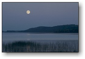 Rising Moon in Canoe Country